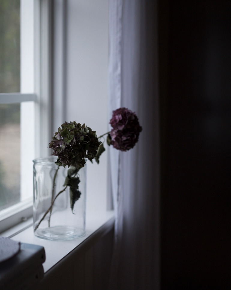 Flowers_1700-tal