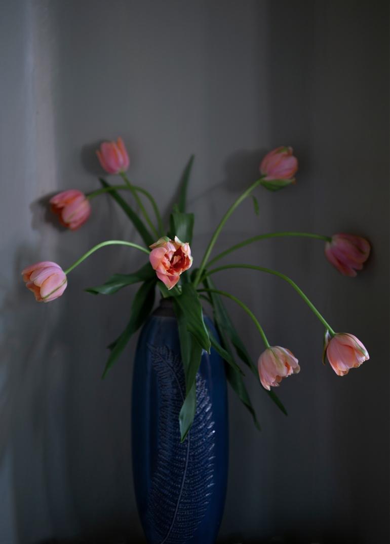 Flower Villa Strömsfors Miniwilla